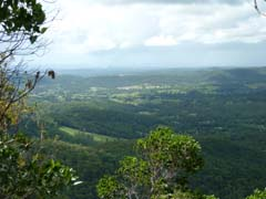 Lookout, Gold Coast. views, bush walking, Mount Tamborine