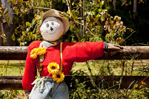 Scarecrow Festival, Mount Tamborine, Event, Family Fun
