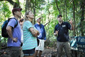 Day Tours, Tamborine Mountain, 4wd tours, Gold Coast Hinterland