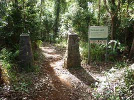 Witches Chase Walking Track, Tamborine Mountain