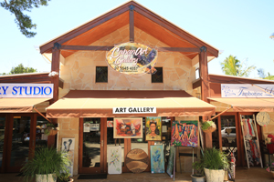 Capanart Gallery, Tamborine Art Studio, National Park, The Geen behind the Gold